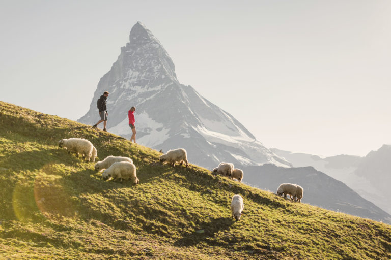 Hotel Beau Rivage Zermatt Matterhorn Wandern Sommer